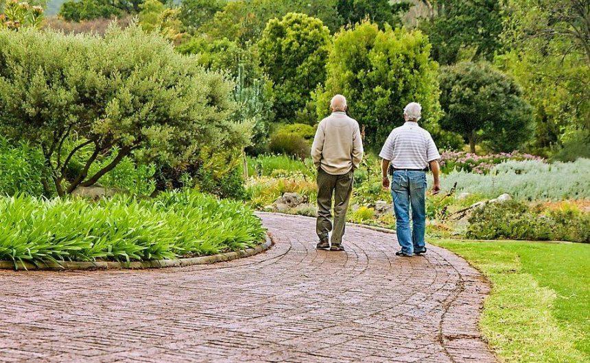 老人走出戶外更活躍更健康